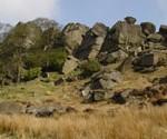 rocks_cover