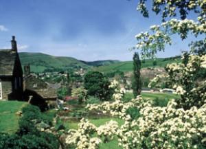 Hayfield village